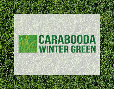 Carabooda Winter Green Couch