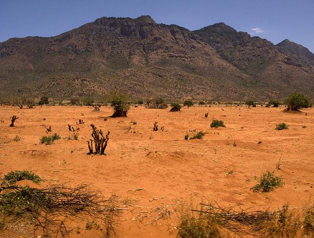 Improve Sandy Soil With Minimum Effort - Carabooda Lawn