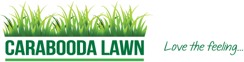Turf, Turf Farm, Roll-on Lawn | Carabooda Lawn, Perth WA